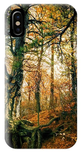 Through The Island Forest IPhone Case