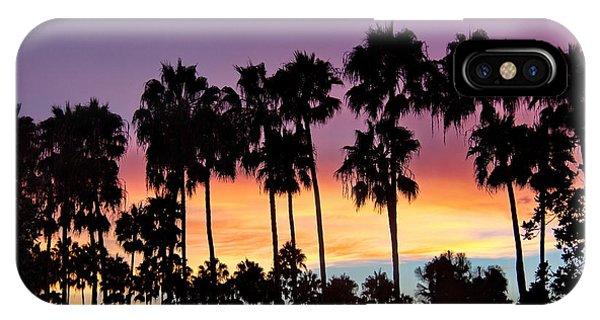 Through The Palms Beach And Tennis Club IPhone Case