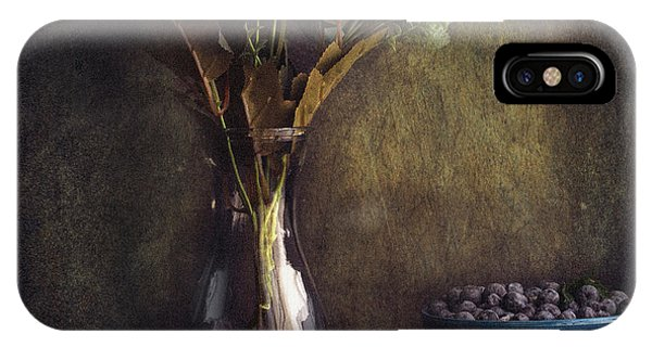 Fruit Bowl iPhone Case - Through The Window by Farid Kazamil