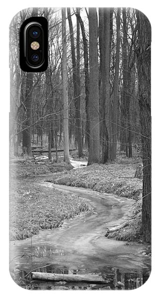 Through The Woods IPhone Case