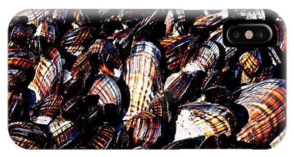 Tidewater Mussels IPhone Case