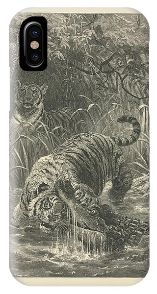 Struggle iPhone Case - Tiger And Crocodile by Natural History Museum, London/science Photo Library