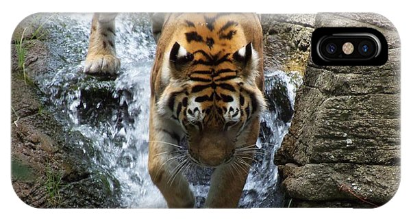 Tiger In The Waterfall Phone Case by Adam L