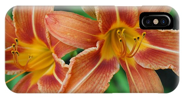 Tiger Lily 3 IPhone Case