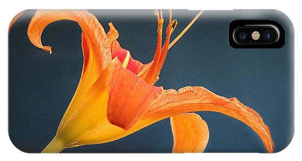 Tiger Lily Phone Case by Christine Nunes
