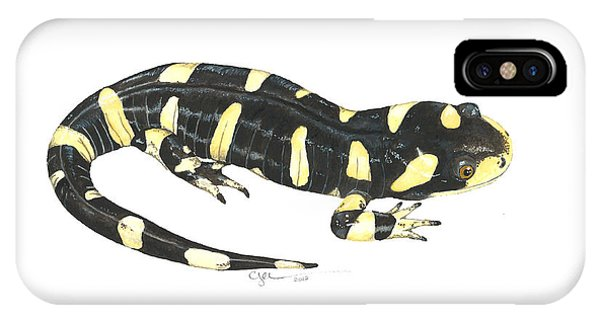 Tiger Salamander IPhone Case