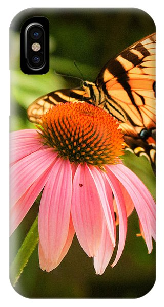 Tiger Swallowtail Feeding IPhone Case