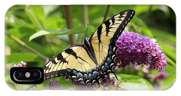 Tiger Swallowtail On Butterfly Bush IPhone Case