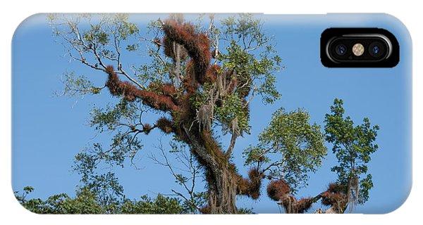 Tikal Furry Tree IPhone Case