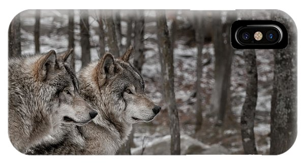Timber Wolf Pair In Forest IPhone Case