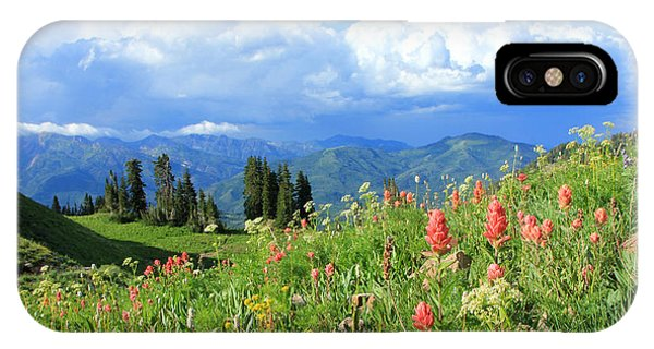 Alpine Meadows iPhone Case - Timpanookie Wildflowers by Johnny Adolphson