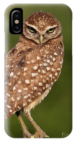 Tiny Burrowing Owl IPhone Case
