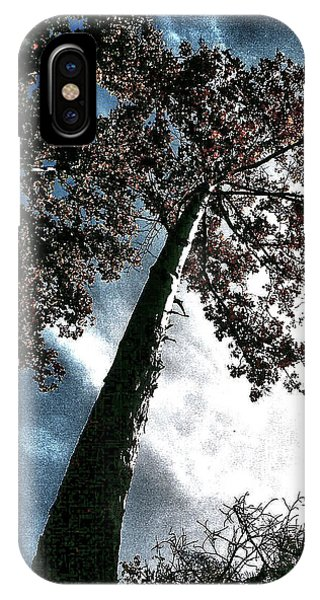 Tippy Top Tree II Art IPhone Case