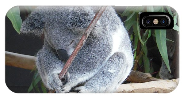 Tired Koala Bear With Stick IPhone Case