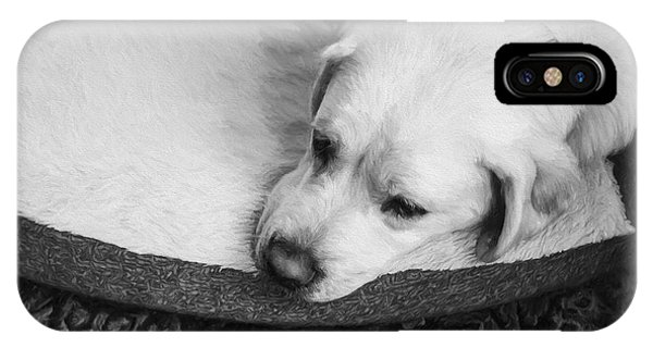 Yellow Lab iPhone Case - Tired Pup by Diane Diederich