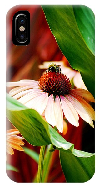 To Be A Bee IPhone Case