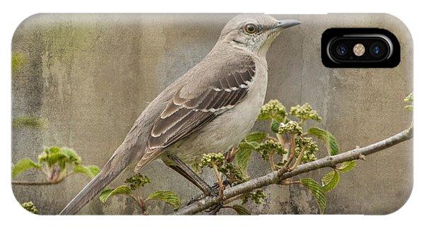 To Still A Mockingbird IPhone Case