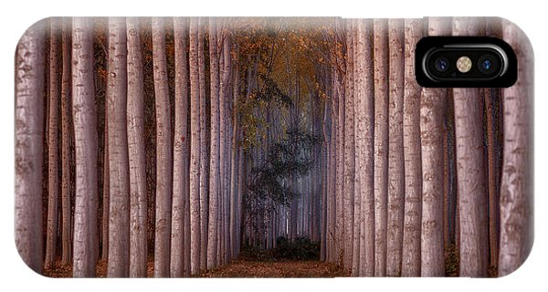 Columns iPhone Case - To The Light by Tony Goran