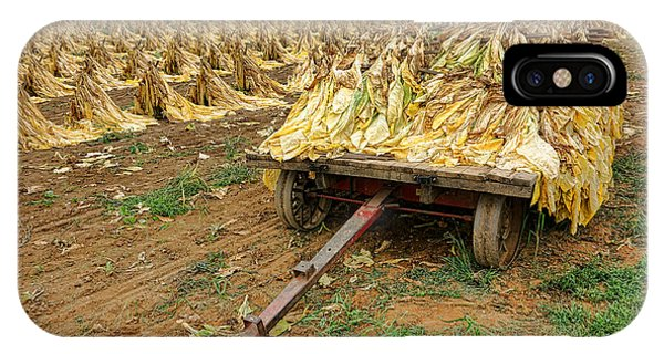 Amish Country iPhone Case - Tobacco Harvest by Olivier Le Queinec