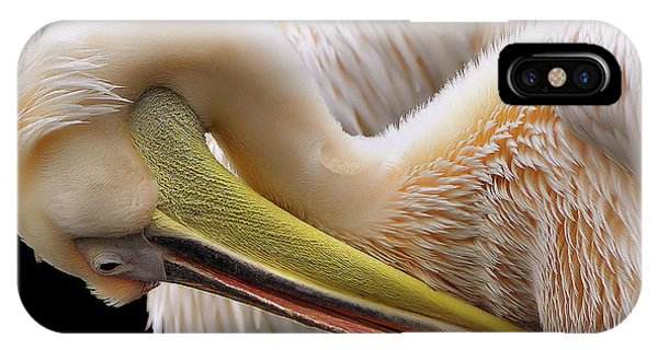 Pelican iPhone Case - Toileting... by Thierry Dufour