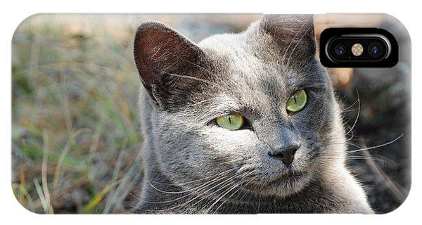 Tom Cat IPhone Case