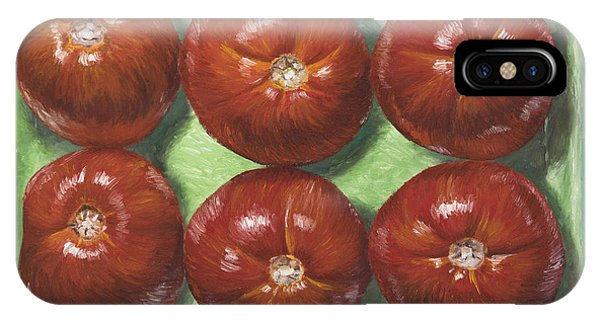 Kitchen iPhone Case - Tomatoes In Green Tray by Jim Zahniser
