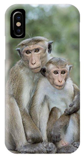 Behaviour iPhone Case - Toque Macaque Embrace by Tony Camacho