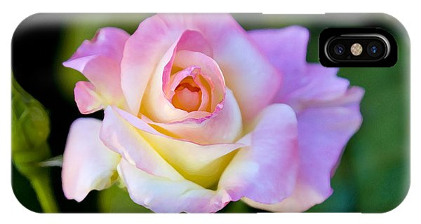 Rose-touch Me Softly IPhone Case