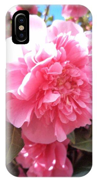 Touching Sunshine IPhone Case