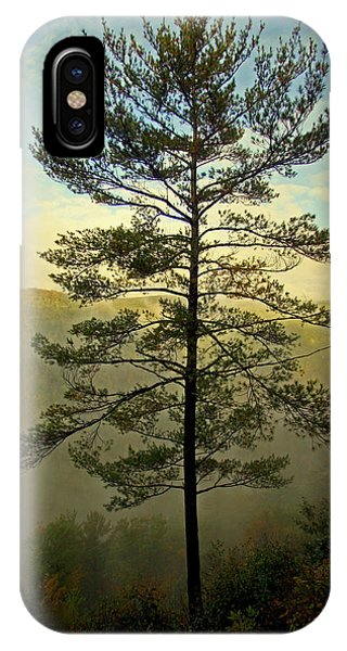Towering Pine IPhone Case