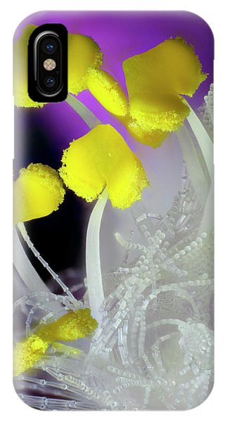 Tradescantia iPhone Case - Tradescantia Flower Anthers by Karl Gaff / Science Photo Library