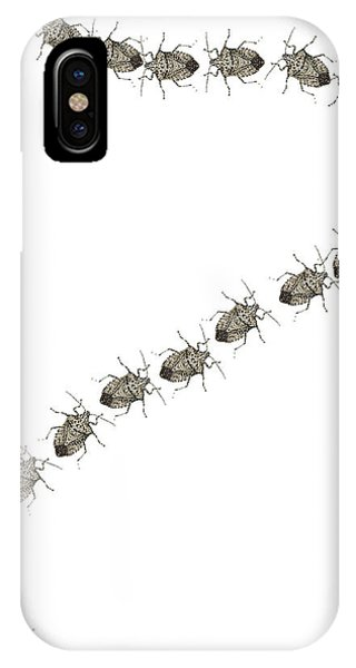 Trail Of Stink Bugs IPhone Case