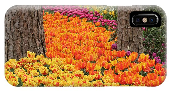 Trail Of Tulips IPhone Case