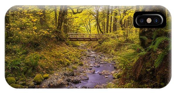 Trail Through Autumn IPhone Case