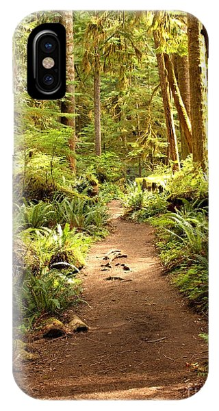 Trail Through The Rainforest IPhone Case