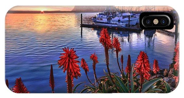 Tranquil Harbor IPhone Case