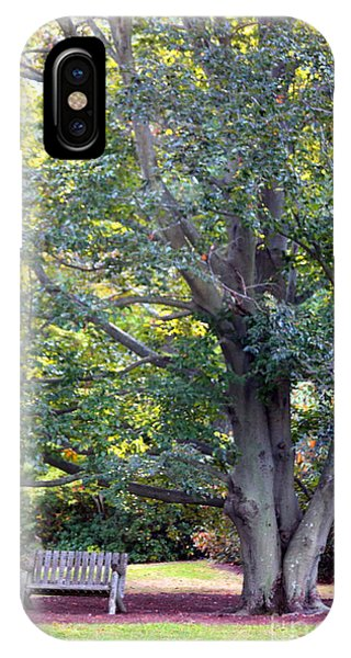 Tranquility Under A Tree IPhone Case