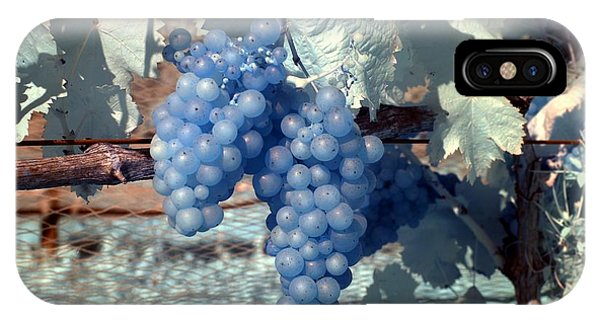 Transparent Grapes IPhone Case