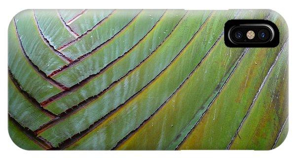 Traveler's Palm Design IPhone Case