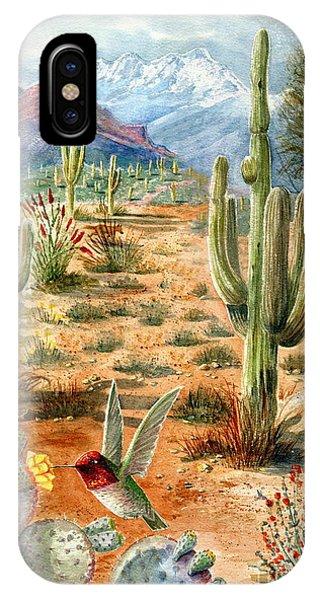 Treasures Of The Desert IPhone Case