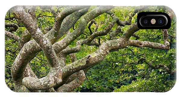 Tree #1 IPhone Case