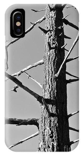 Tree Ancestor IPhone Case