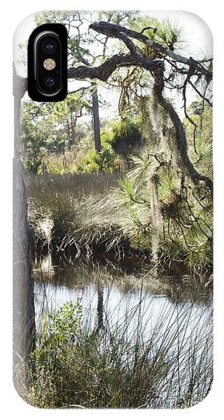 Tree And Branch IPhone Case