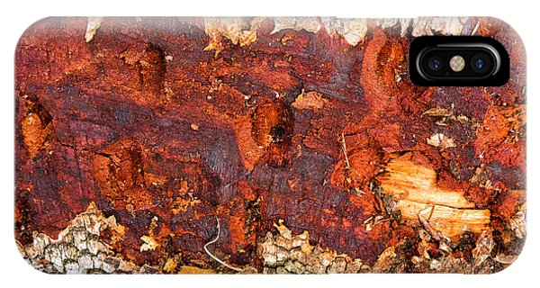 Tree Closeup - Wood Texture IPhone Case