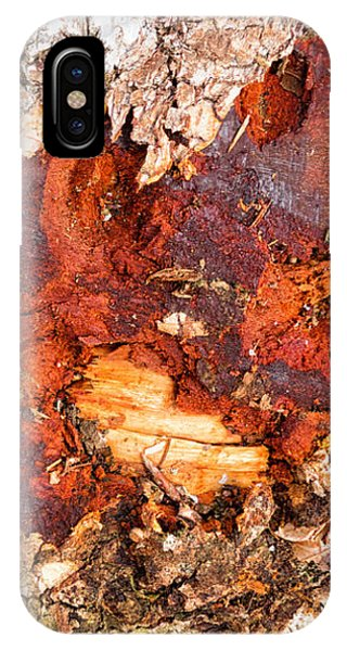 Tree Closeup - Wood Texture IPhone Case