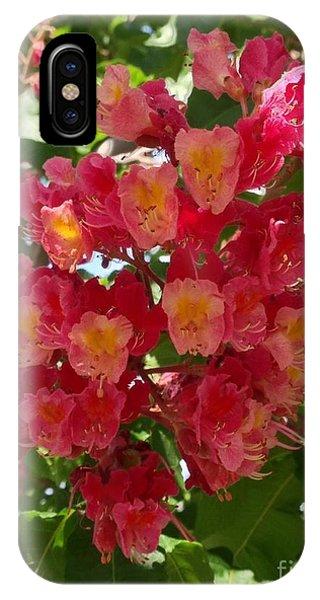 Spring Surprise IPhone Case