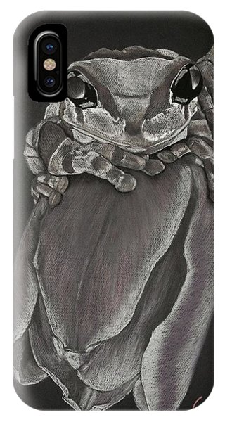 Tree Frog On Tulip IPhone Case
