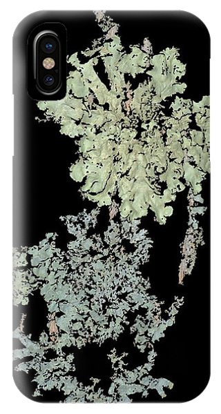 Tree Fungus IPhone Case