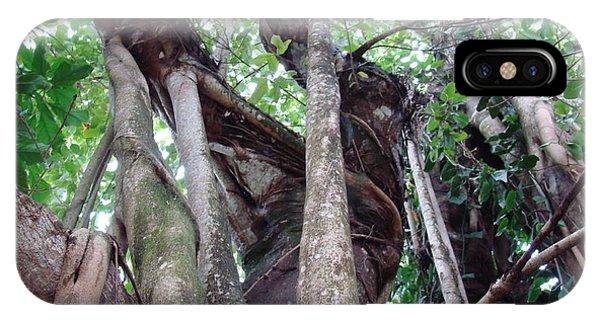 Tree Hugger 3 Phone Case by Van Ness