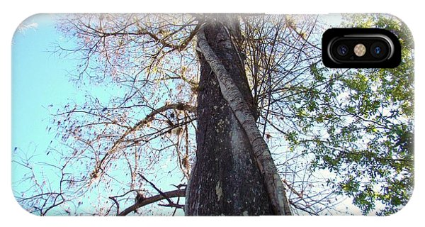Tree Hugger 4 Phone Case by Van Ness